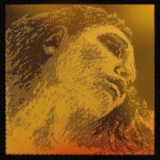 COARDA VIOARA PIRASTRO EVAH PIRAZZI - SOL GOLD